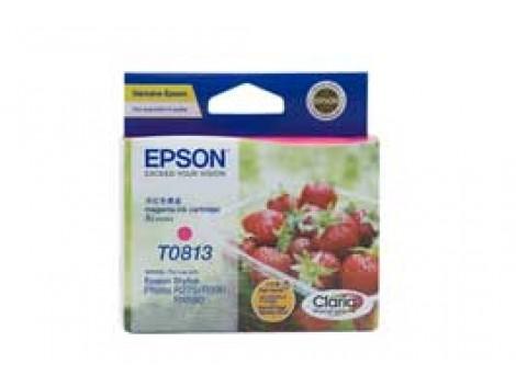 Genuine Epson T1113 Ink Cartridge