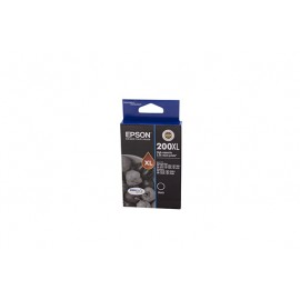 Genuine Epson T2011 Ink Cartridge