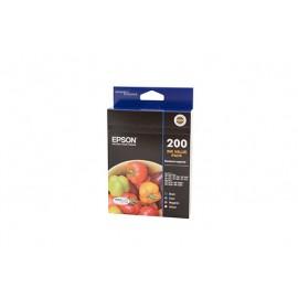 Genuine Epson T2006 Ink Cartridge