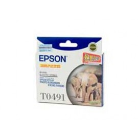 Genuine Epson T0491 Ink Cartridge