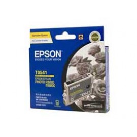 Genuine Epson T0541 Ink Cartridge