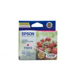 Genuine Epson T1113 Ink Cartridge