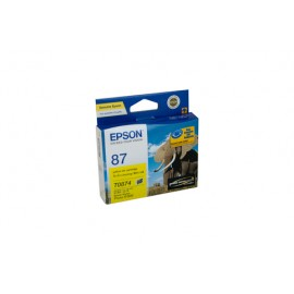 Genuine Epson T0874 Ink Cartridge
