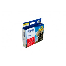 Genuine Epson T0879 Ink Cartridge